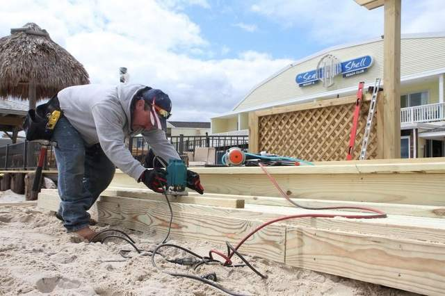 LBI Getting Back to Business with the help of many – Coastal Restoration